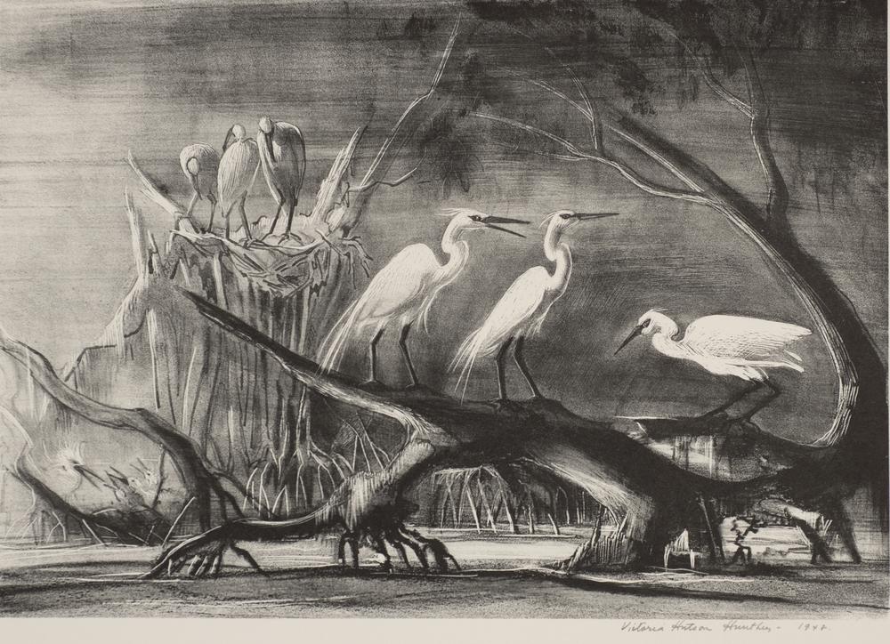 Detail for Cuthbert Rookery