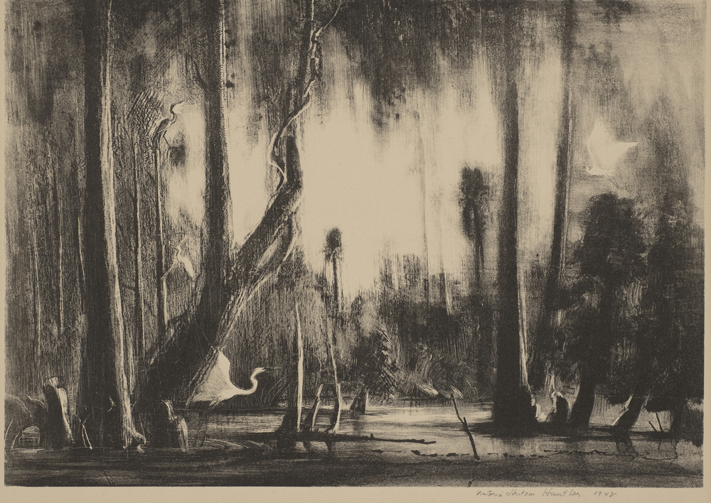 Florida Swamp #2